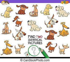 identisk, lurar, bilder, hund, två, lek, finna