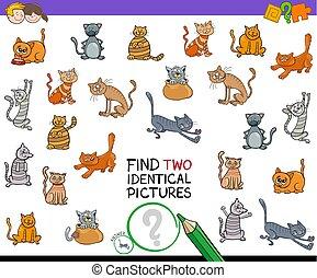 identisk, lurar, bilder, två, katt, lek, finna