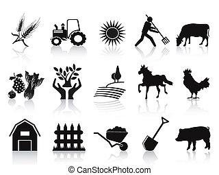 ikonen, svart, sätta, lantgård, lantbruk