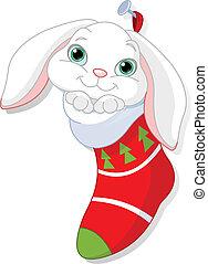 jul, kanin, socka