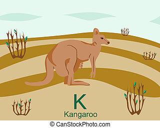 känguru, k, alfabet, djur