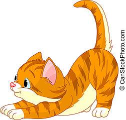 katt, hår, sträckande, söt, röd