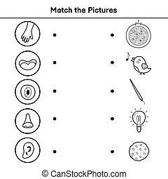 kids., fem, bilder, aktivitet, sida, sans, lek, tändsticka, motsvarande