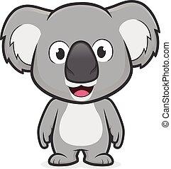 koala, stående