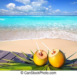 kokosnötter, västindisk strand, cocktail, paradis