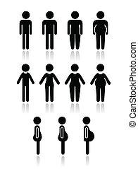 kropp, kvinnor, man, typ, ikonen