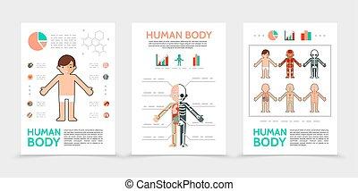 kropp, lägenhet, mänsklig, poster