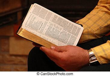 läser, bibel, man