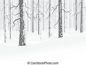 lövfällande, vinter, skog