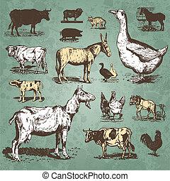 lantgård, årgång, sätta, djuren, (vector)