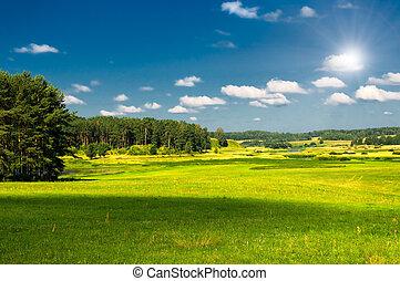 lantligt landskap