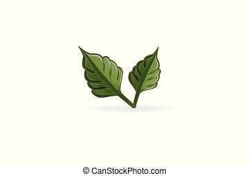 logo, vektor, hälsa, natur, blad