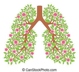 lungan, hälsosam