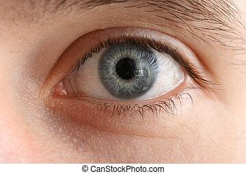 makro, närbild, ögon, mänsklig