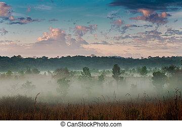 mist, morgon, sky.