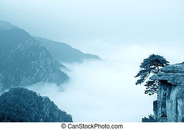 moln, fjäll, mist, landskap