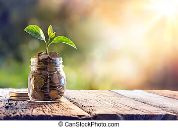 mynter, växt, besparingar, växande