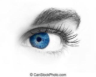 närbild, ögon