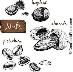 nuts., sätta, illustrations.