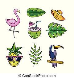 planterar, sätta, djuren, bladen, tropical frukter