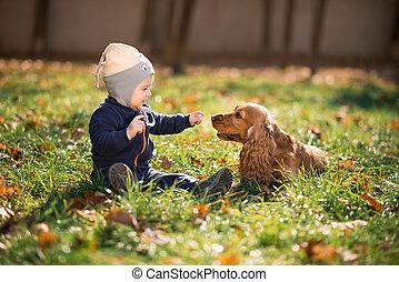 pojke, gräs, hund, sittande