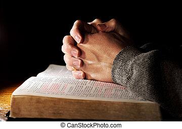 praying händer, över, välsignad bibel