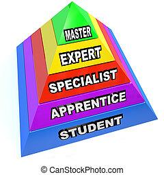 pyramid, specialist, herravälde, stiga, expertis, kapten, student