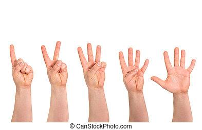räkning, isolerat, en, fingrar, fem, hand rörelse