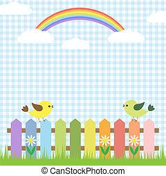 regnbåge, söt, fåglar