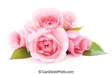 ro, rosa