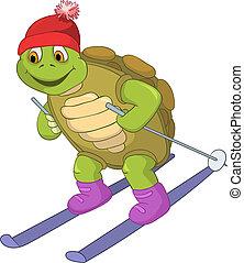 rolig, skiing., turtle.