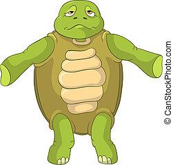 rolig, turtle., confusion.