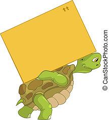 rolig, turtle., delivery.