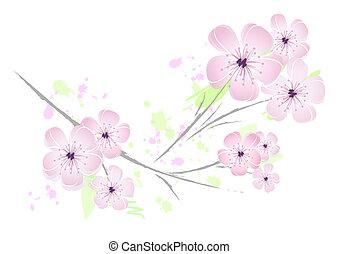 rosa, blommig, blomma, design, -