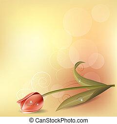 rosa, pastell, tulpan, bakgrund, lätt