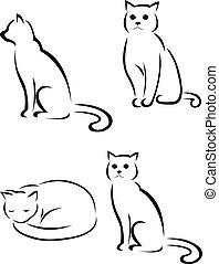 silhuett, katt