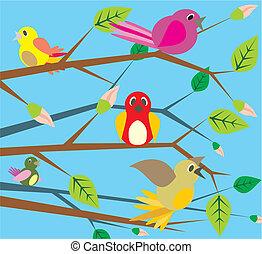 sjungande, -, fåglar, fjäder