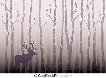skog, träd, vektor, björk