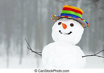 snögubbe, rolig, vinter