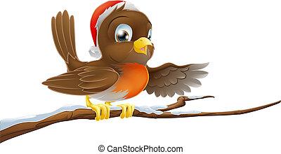 snöig, jul, filial, rödhakesångare