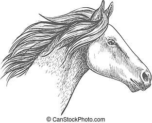 stående, häst, vit, skiss, blyertspenna