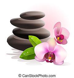 stenar, kurort, blomningen