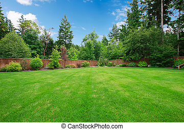 stort, träd., fäkta, grön, bakgård
