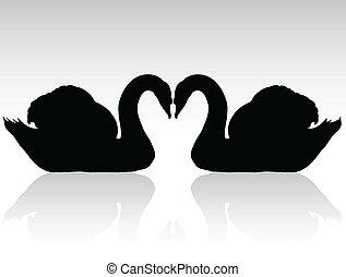 swans, silhouettes, vektor, svart, två