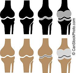 symboler, knä, vektor, människa förenad