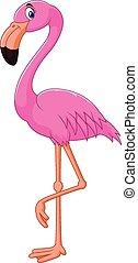 tecknad film, flamingo, fågel