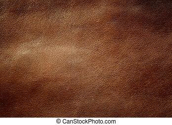 texture., glänsande, brun, läder