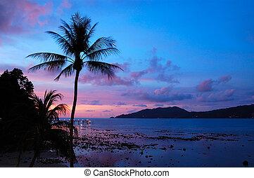 thailand, solnedgång, patong strand, phuket