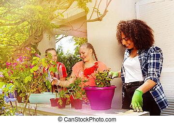 tonåring, plantande, flickor, tre, utomhus, blomningen, lycklig