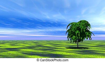 träd, gräs, grön